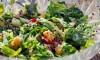 quinoa_mineola_geitenkaas_tomaat_komkommer_quinoakut_salade