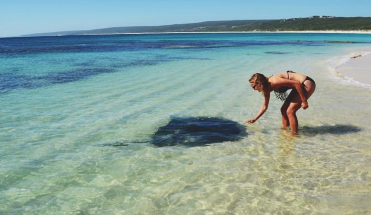 Een Ode Aan De Extremen Van Immens Australi 235 Dieren