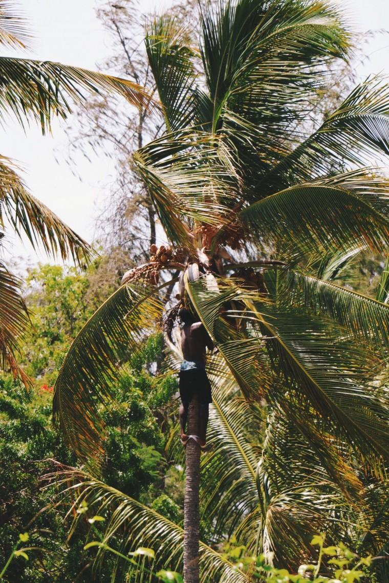 Zanzibar reistips - 2