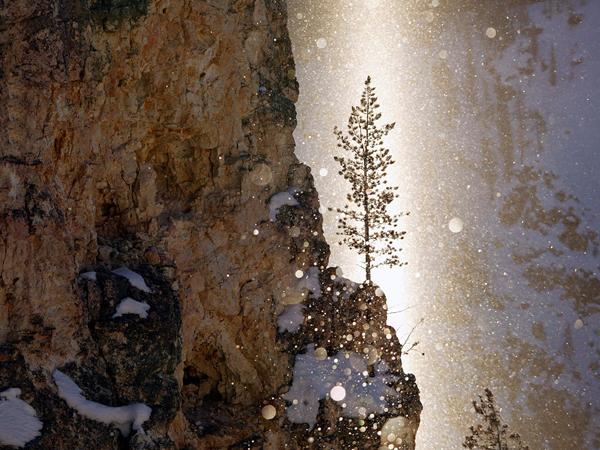 Keuken Design Centre Zaandam : Yellowstone National Park Winter