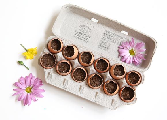 Slaapkamer Inrichten Op Schaal : DIY Egg-Carton Garden