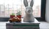 Nieuwe aanwinst: bunny