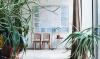Met dit boek transformeer je je huis in een groene oase