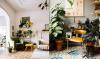 Huis vol patroontegeltjes en een fotogenieke kat