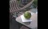 watermeloen-snijden-met-zwaard