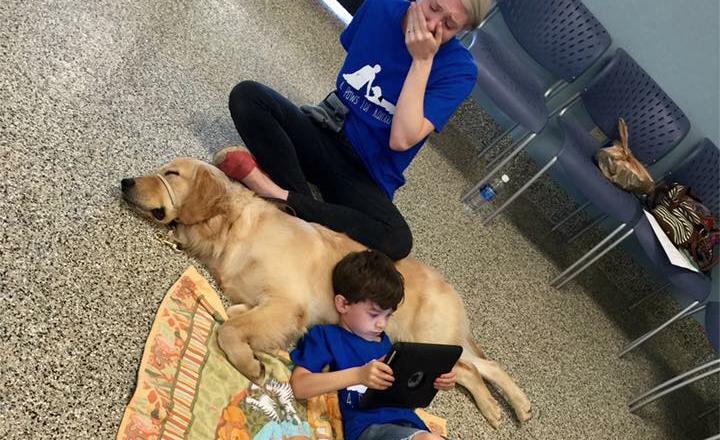moeder-deelt-het-geweldige-moment-waarop-haar-autistische-zoon-zijn-geleidehond-krijgt