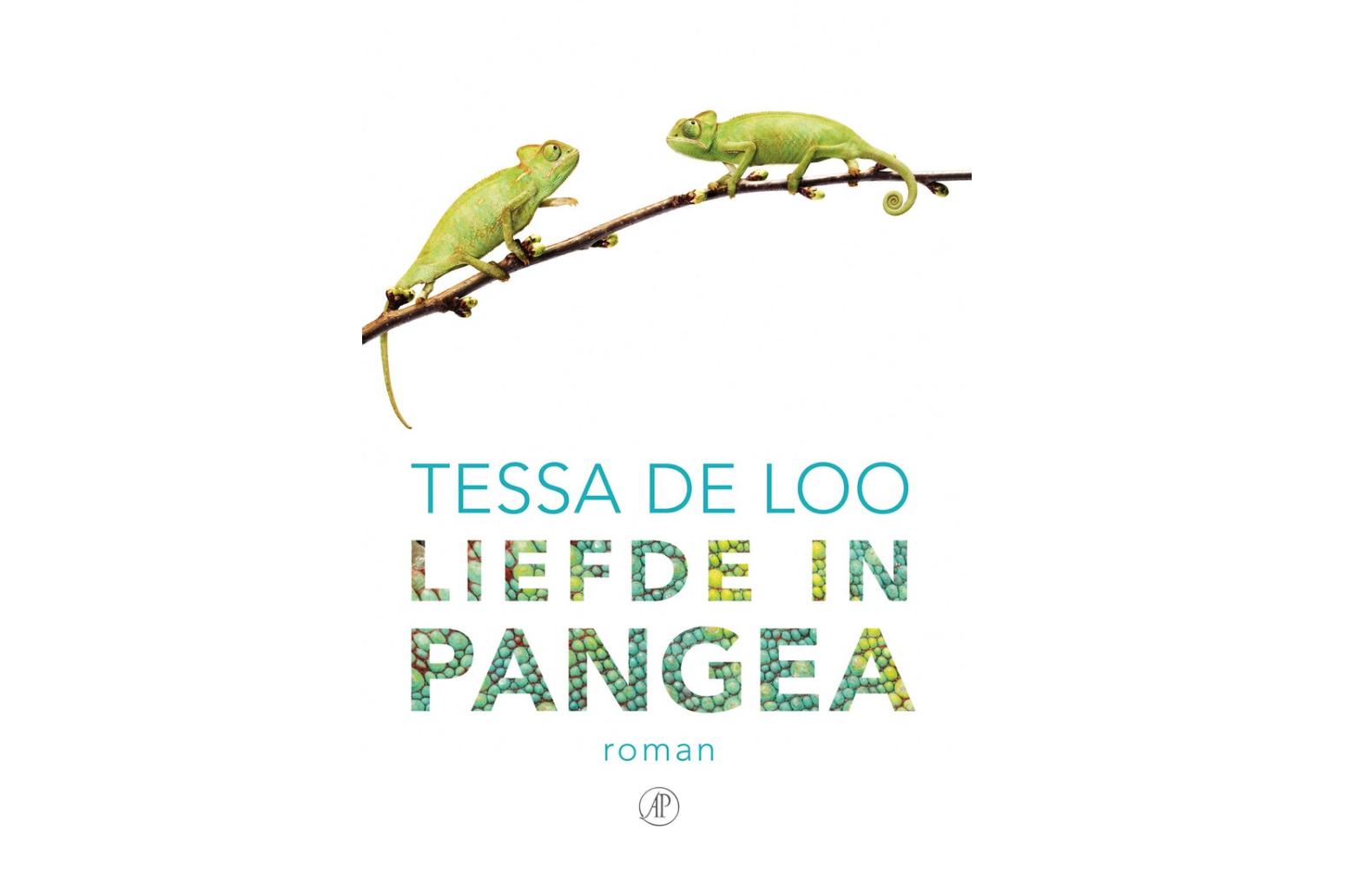 Afbeeldingsresultaat voor tessa de loo pangea