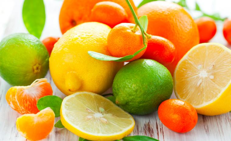 citrus - stock