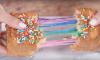 regenboog tosti