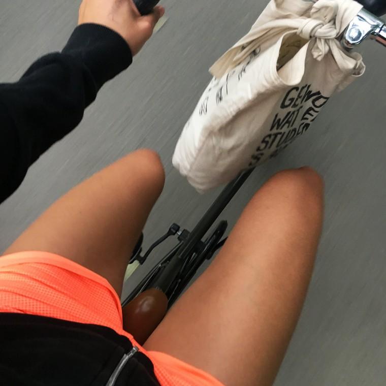sportie