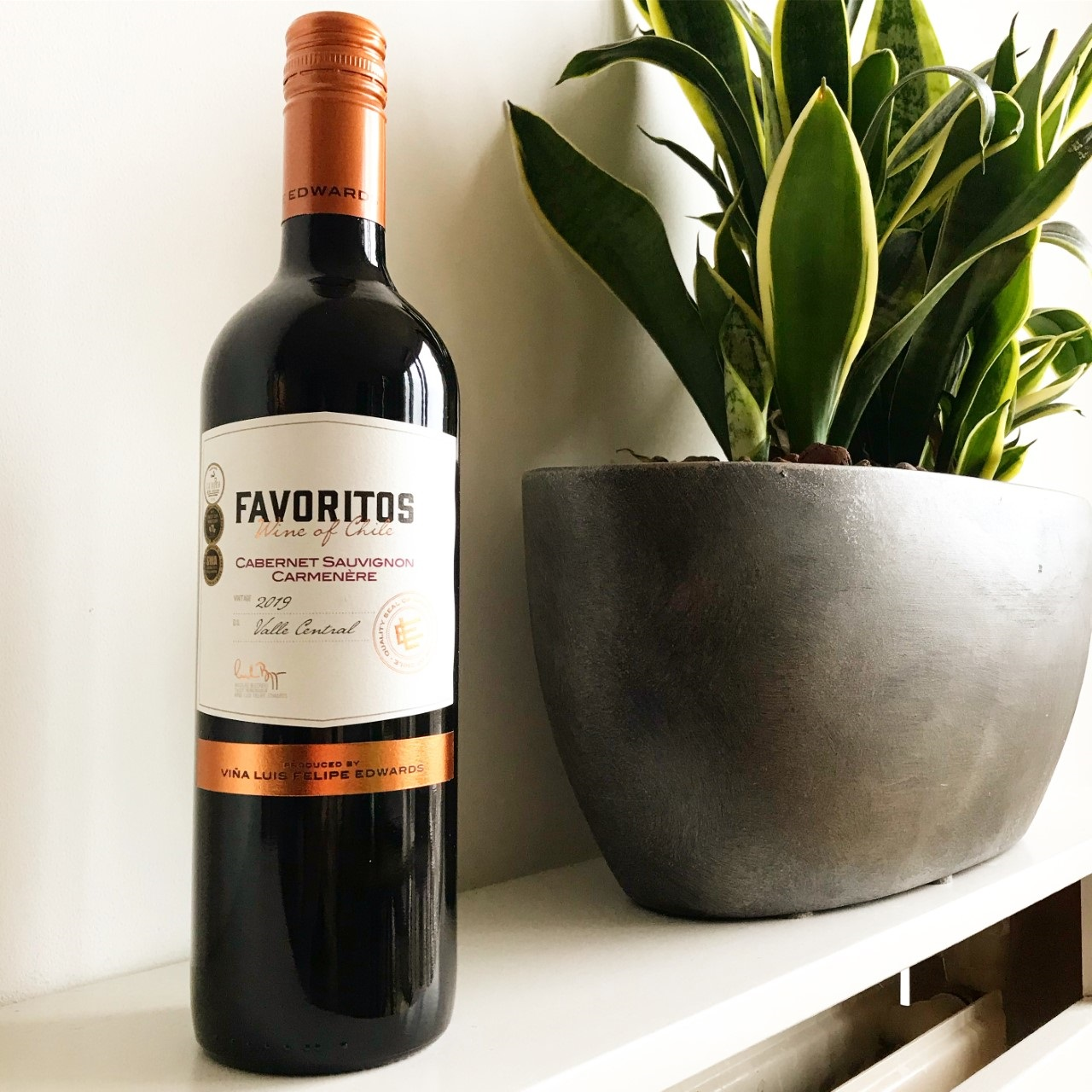 Wijn 3 - favoritos