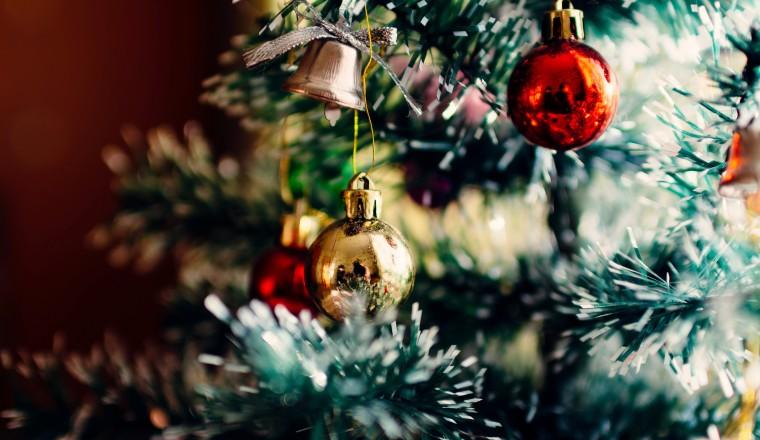 adopteer-een-kerstboom-1