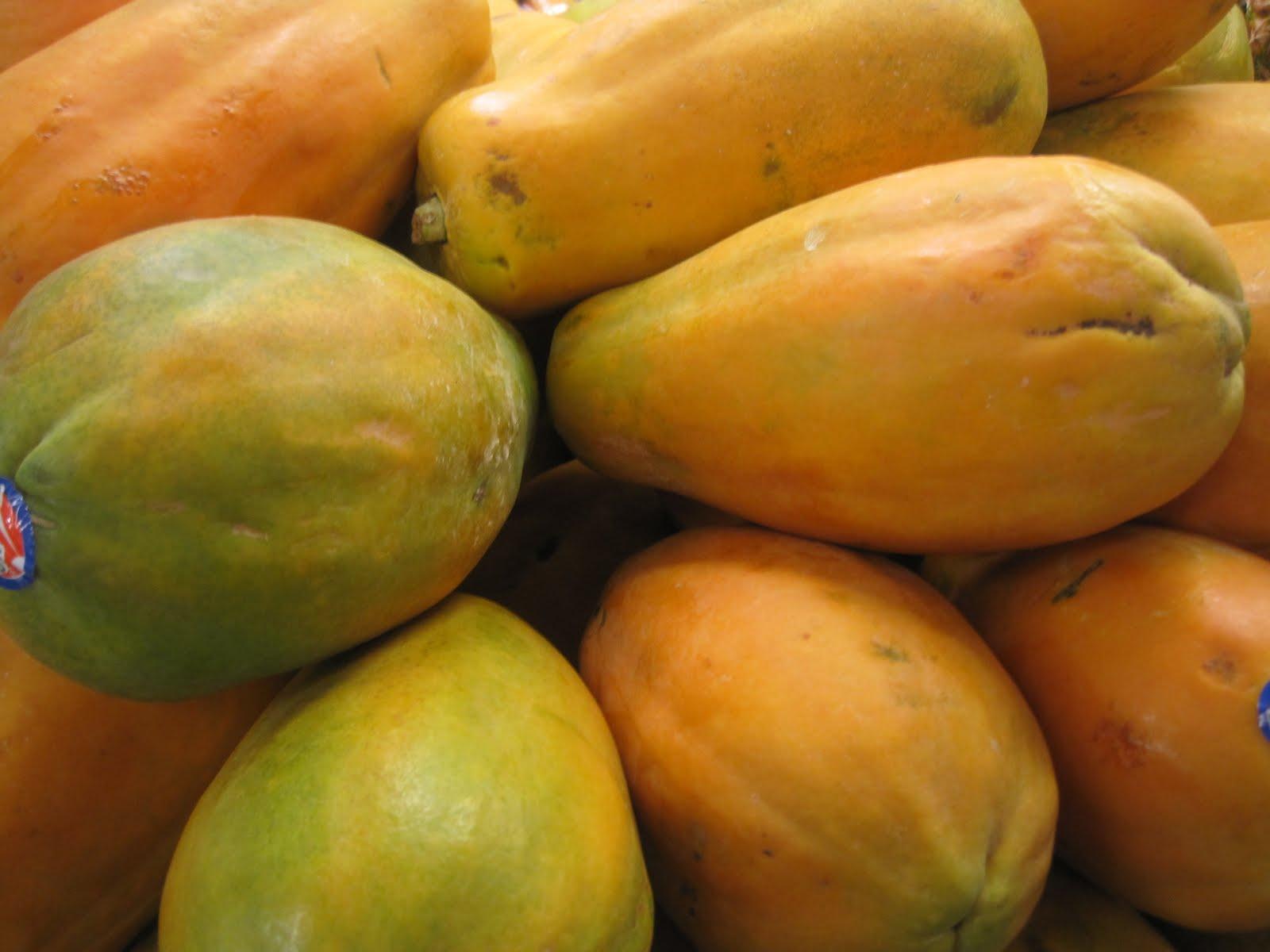 de-papaya-een-les-in-tropisch-fruit