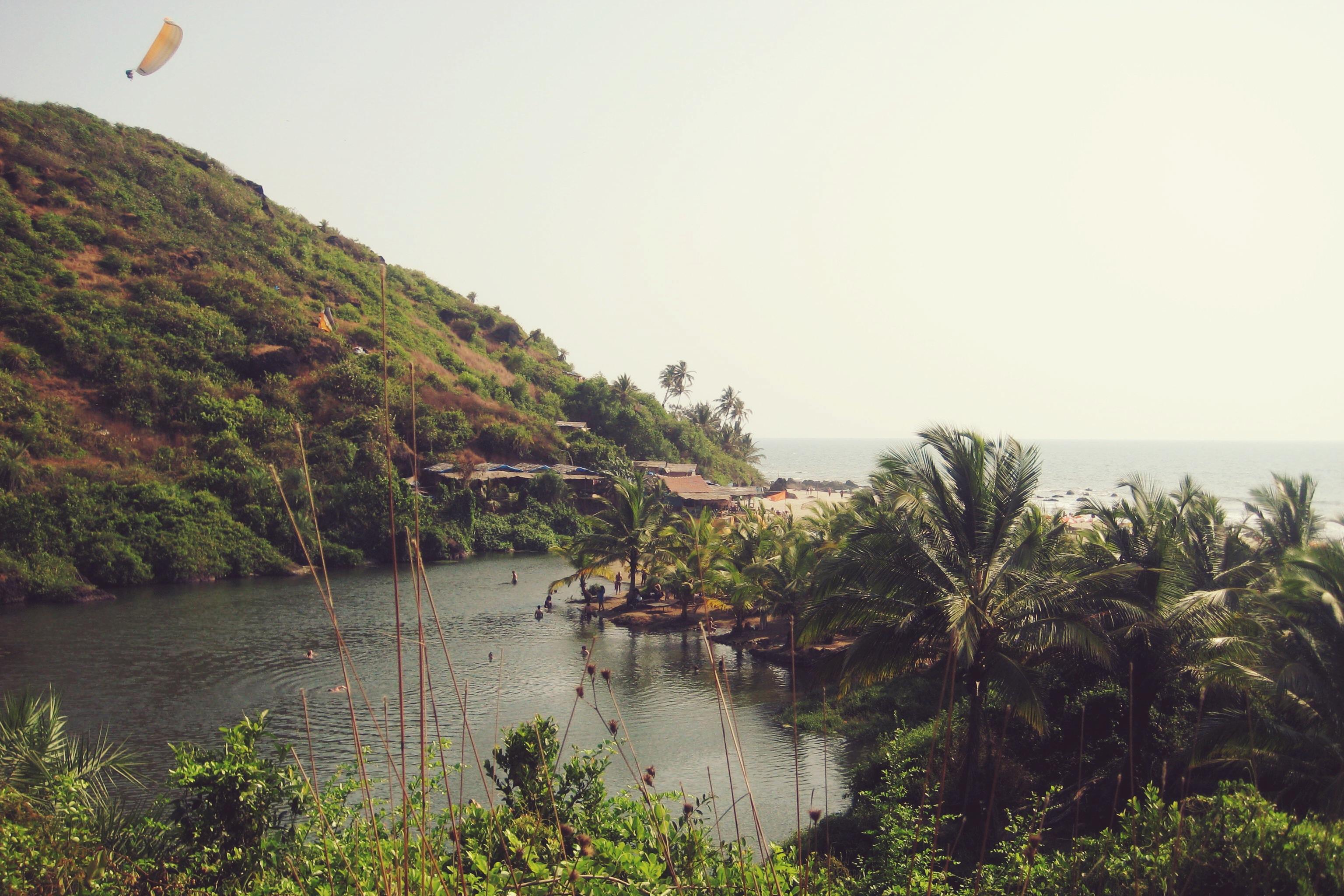 Arambol India 8