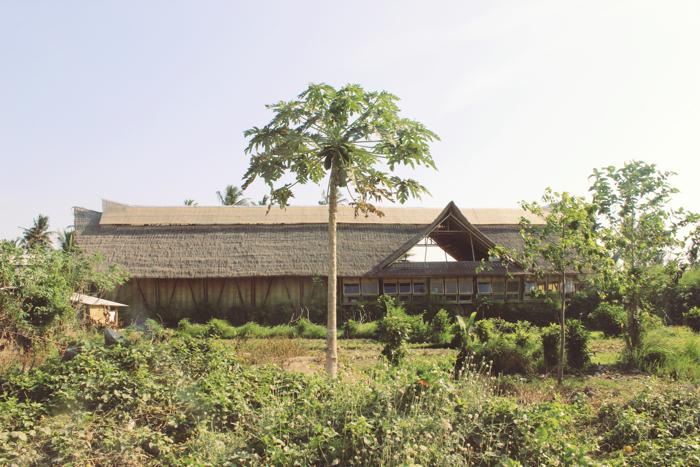 Big Tree Farm2