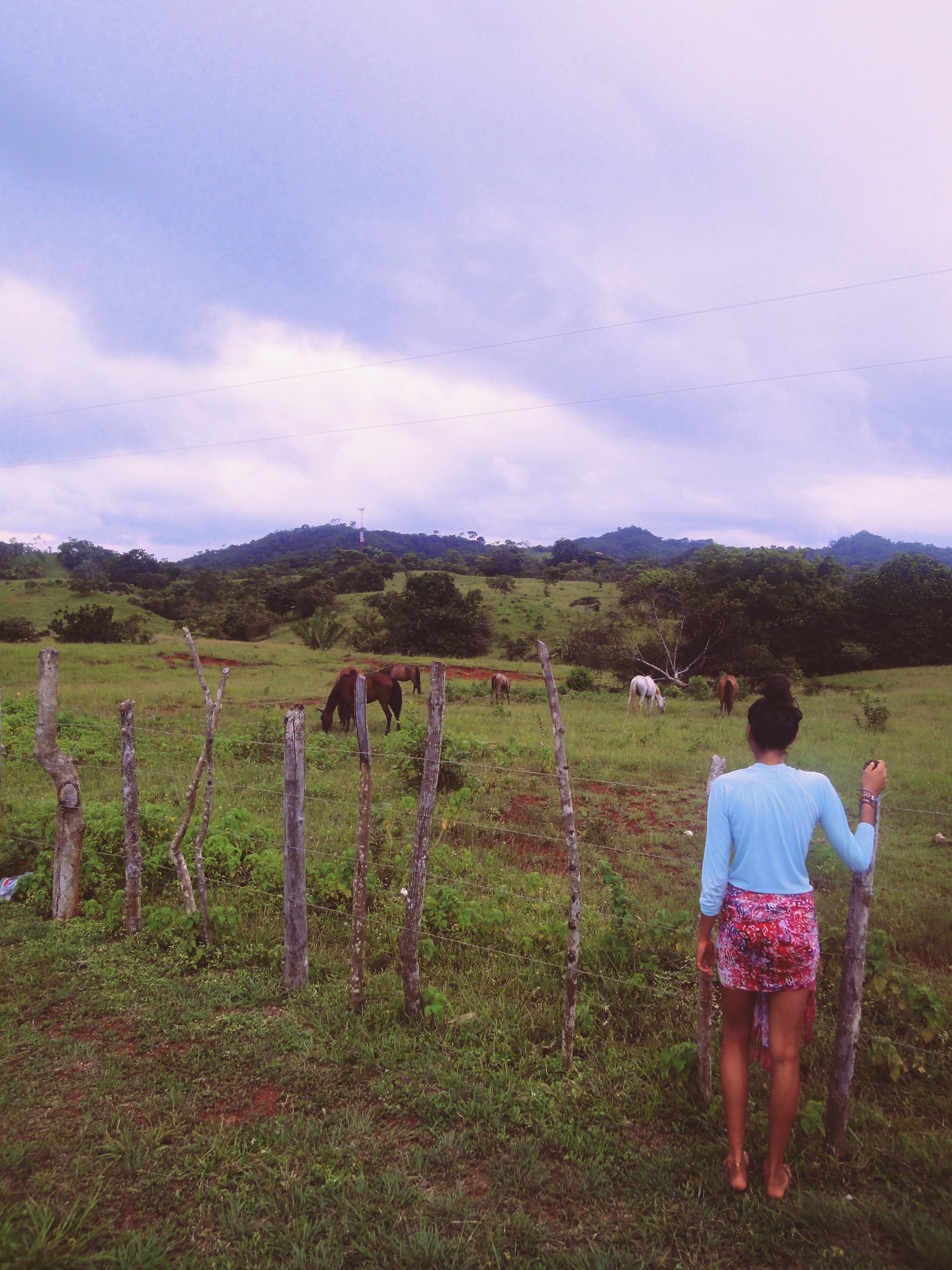 Panama Travelblog 5