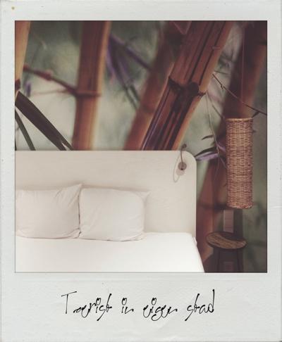 Polaroid Wall 3-206