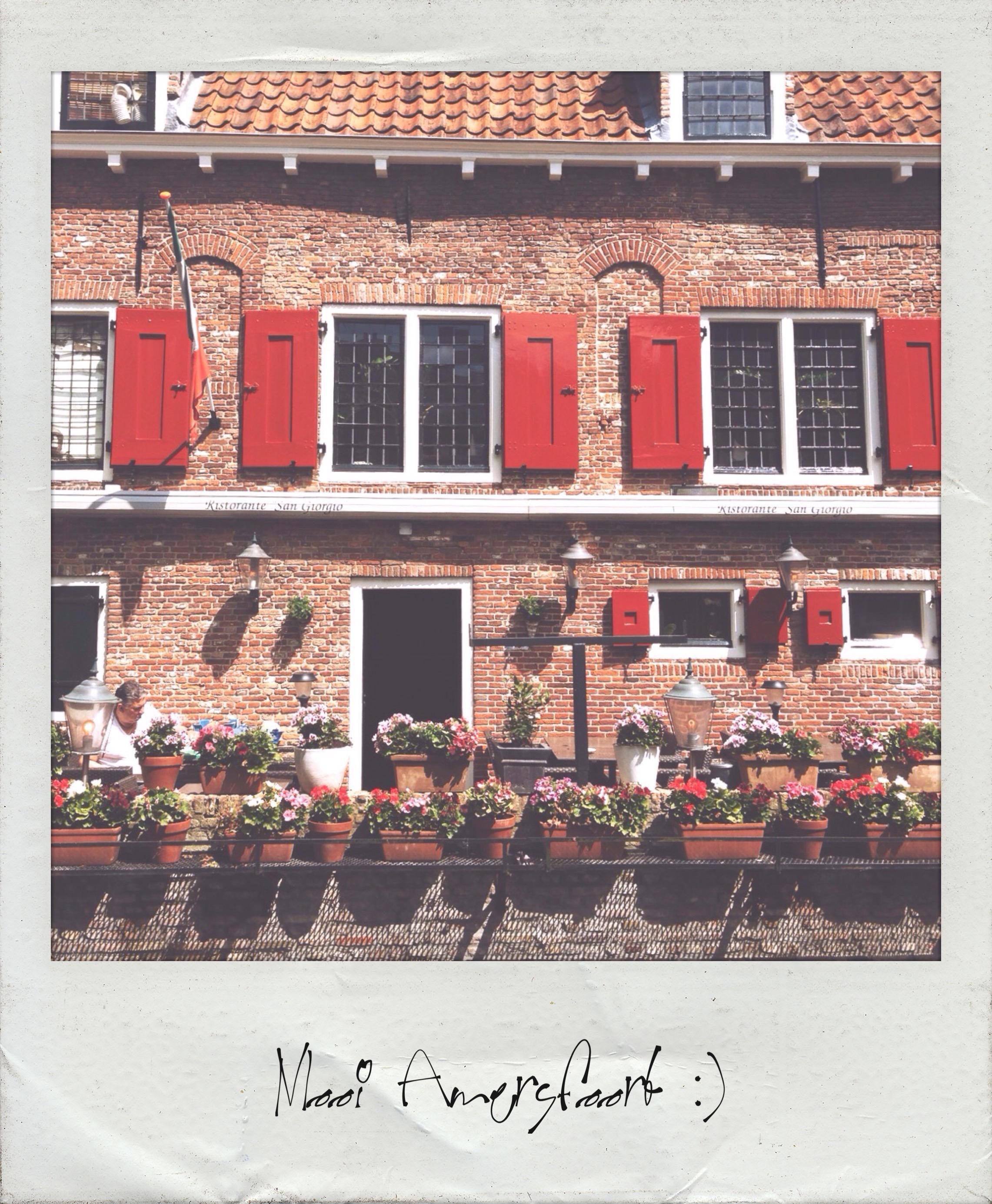 Polaroid Wall 9-17
