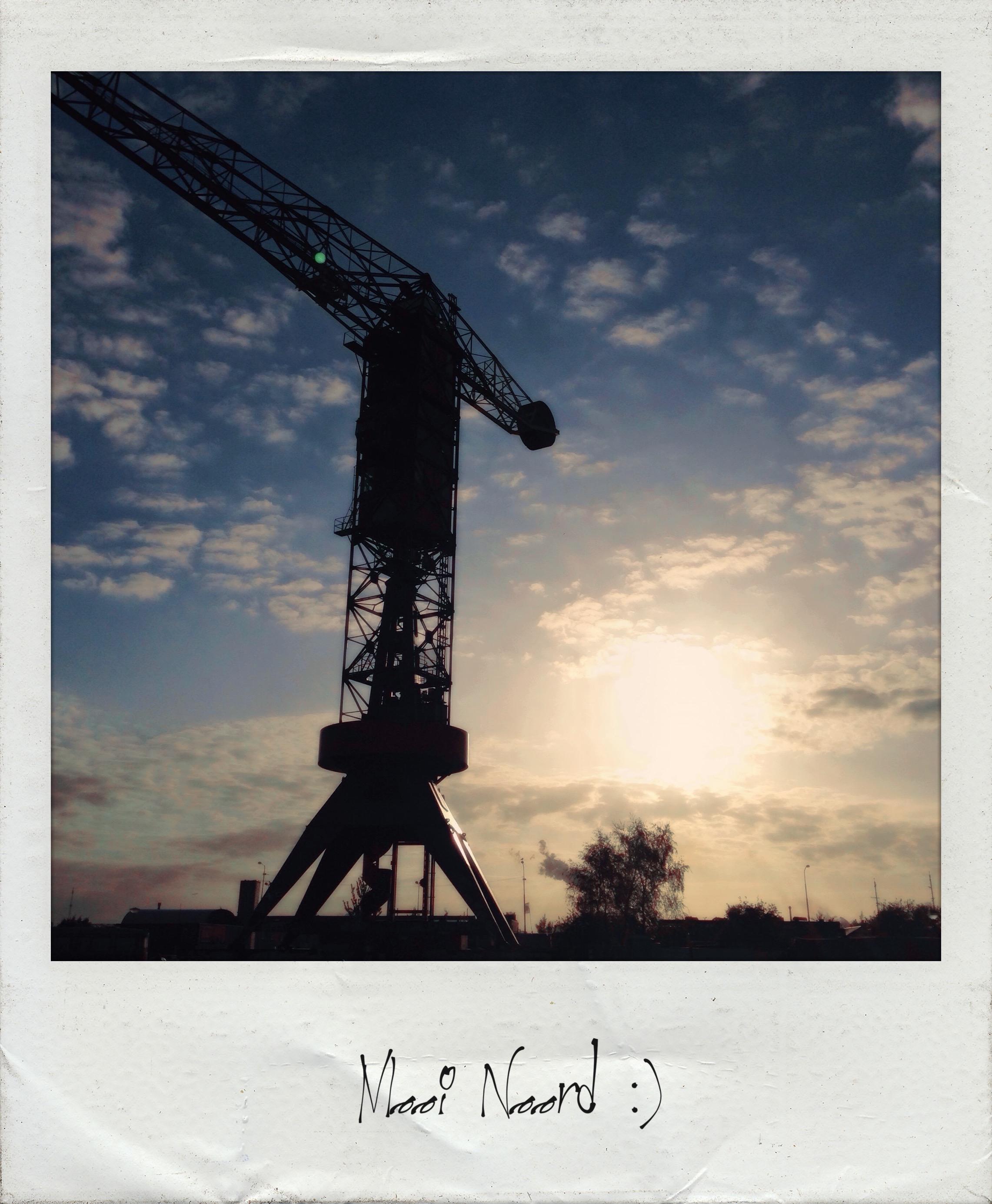 Polaroid Wall 9-23