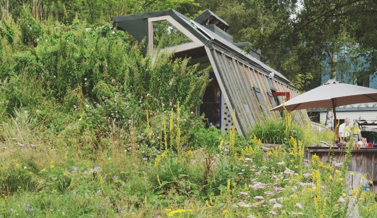 Theehuis Earthship Zwolle - 1