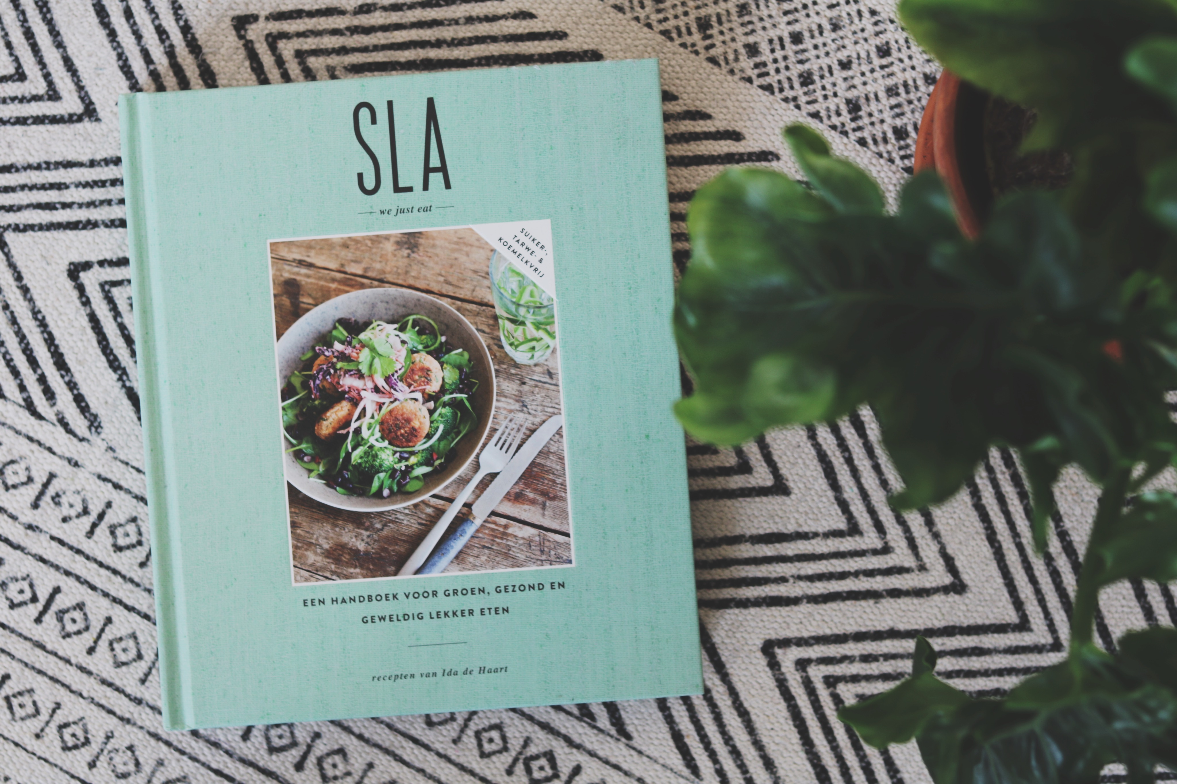 Gezond Eten Leven Boeken - 1 (1)