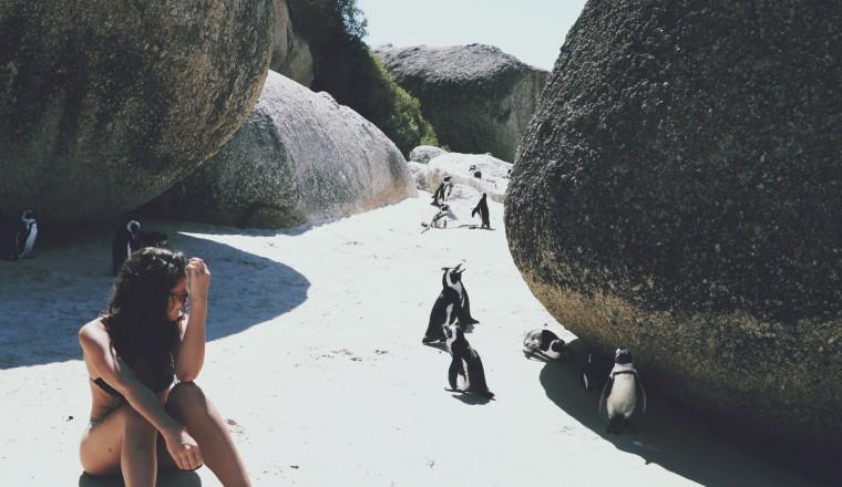 Chillen met de pinguïns op Boulders Beach