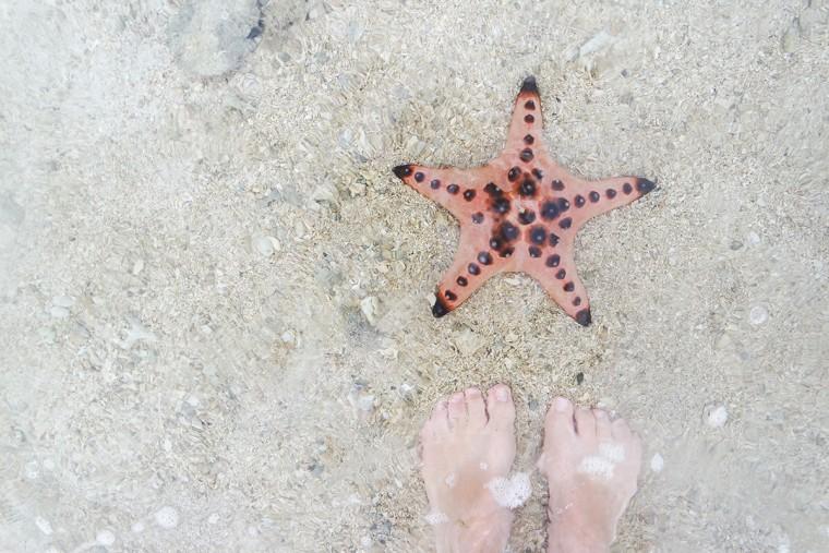 Travel Tips voor de Filipijnen - 8