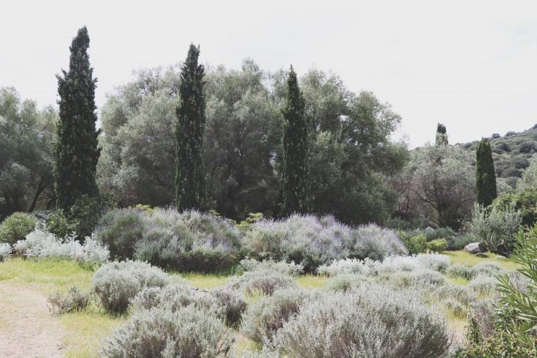 Moderne Hippies - Corsica - Saleccia