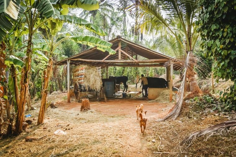 duurzaam-ondernemen-jimsfarm-sri-lanka-moderne-hippies-016