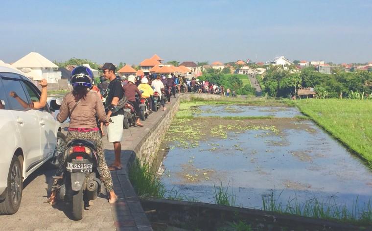 Foto 2 - Het Bali-virus