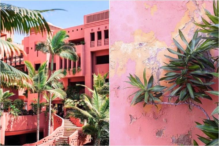 moderne hippies x bloemen planten instagram2