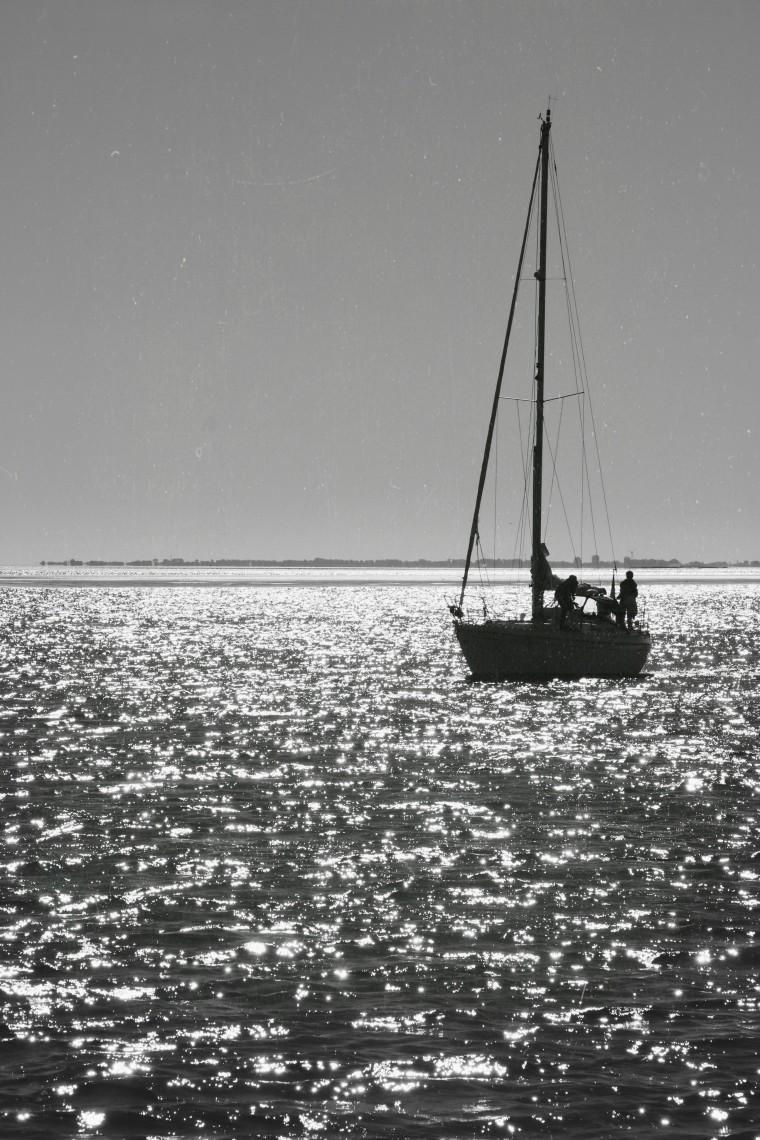 Waddenzee Werelderfgoed x Moderne Hippies - 4