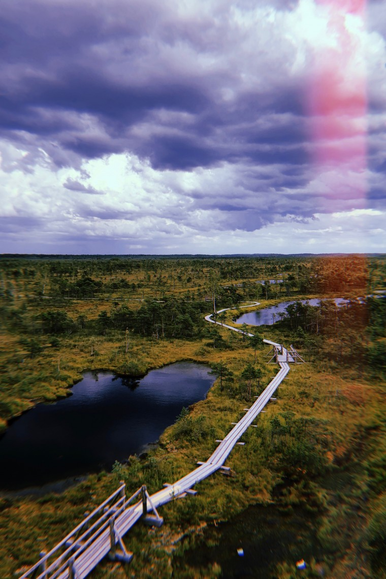 Latvia - Kemeri National Park Bog Boardwalk 2