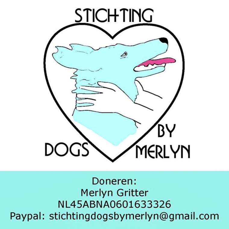 stichting dogs by merlyn x moderne hippies-1-30