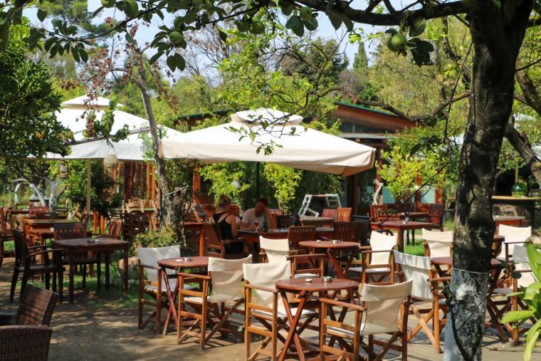 Acharavi x Lemon Garden Restaurant 1