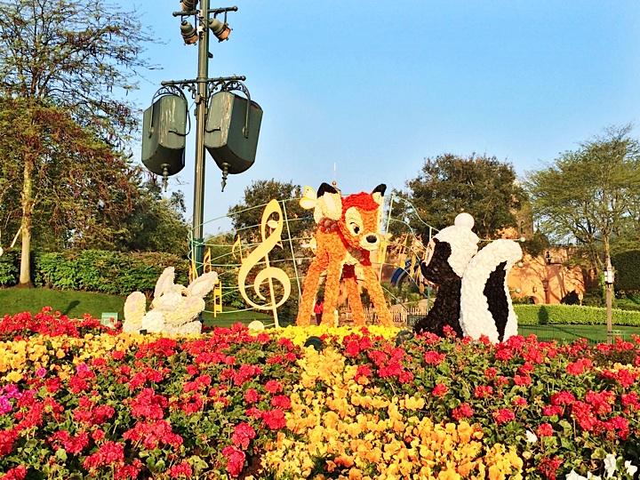 Achter de schermen bij Disneyland