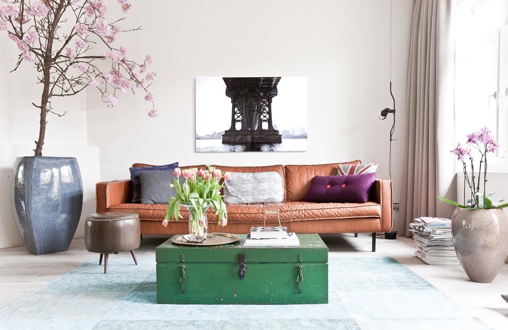 Bloesemboom binnen, bij jou in huis: Hoe & waar vandaan?