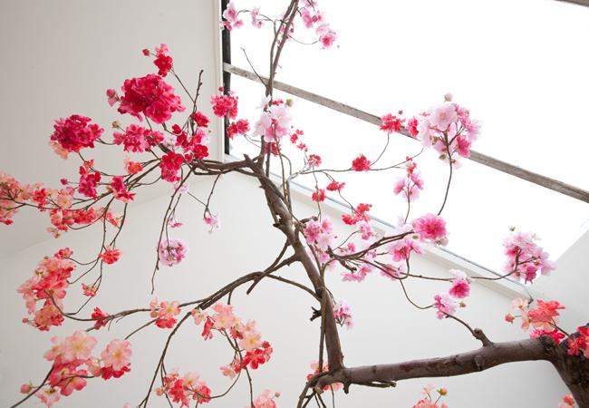 Verbazingwekkend Bloesemboom binnen, bij jou in huis: Hoe & waar vandaan? TZ-69