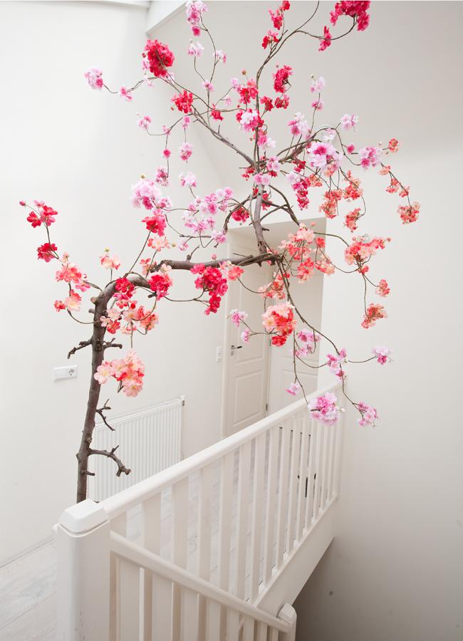 Fonkelnieuw Bloesemboom binnen, bij jou in huis: Hoe & waar vandaan? ZD-62