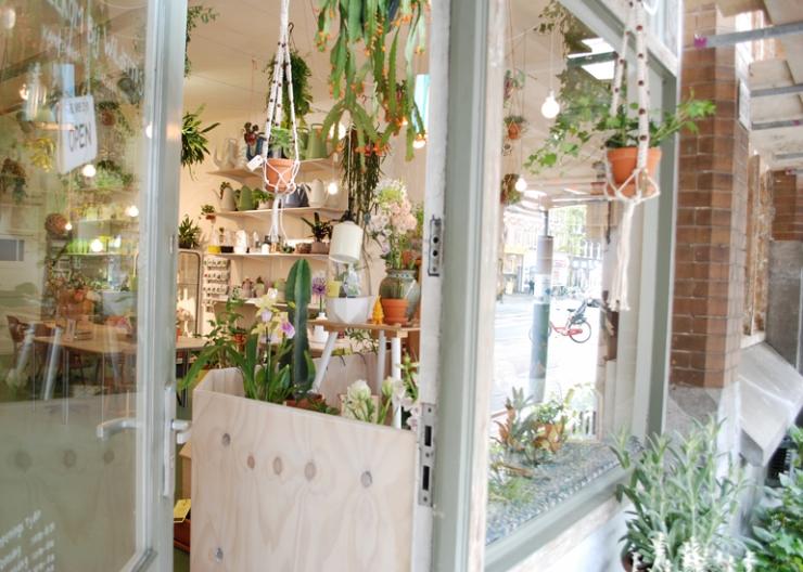 Coole shop voor je stadstuintje