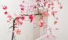 Weekendtip: Cherry Blossom Festival