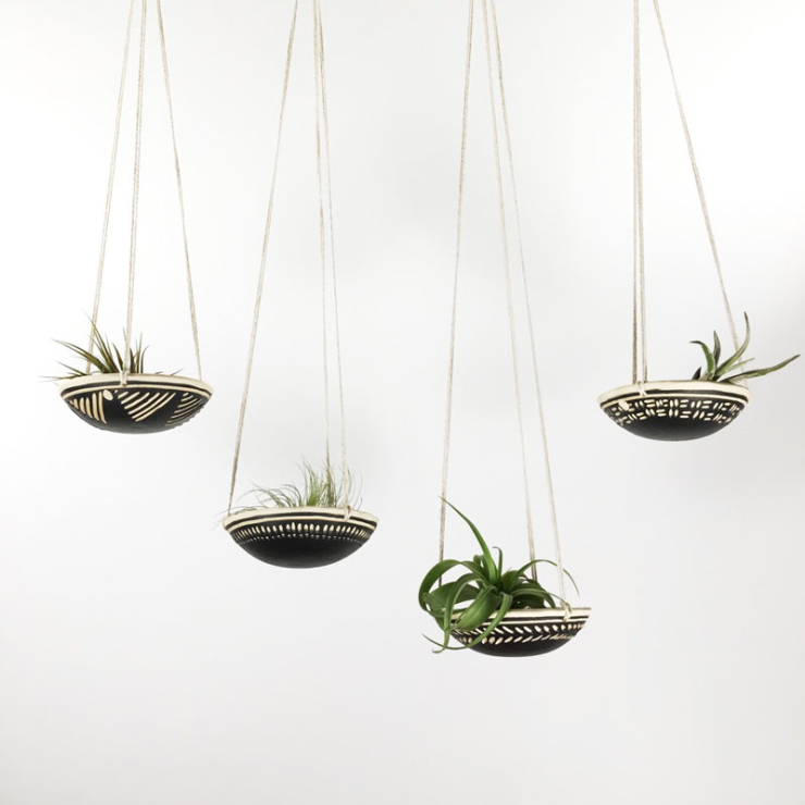 Verliefd op airplantjes in huis