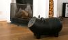 Kijk 'm eens pronken in mijn huis; de Hausschwein