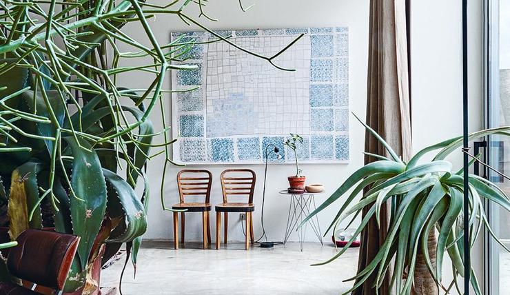 Met dit boek transformeer je je huis in een groene oase - INTERIOR ...