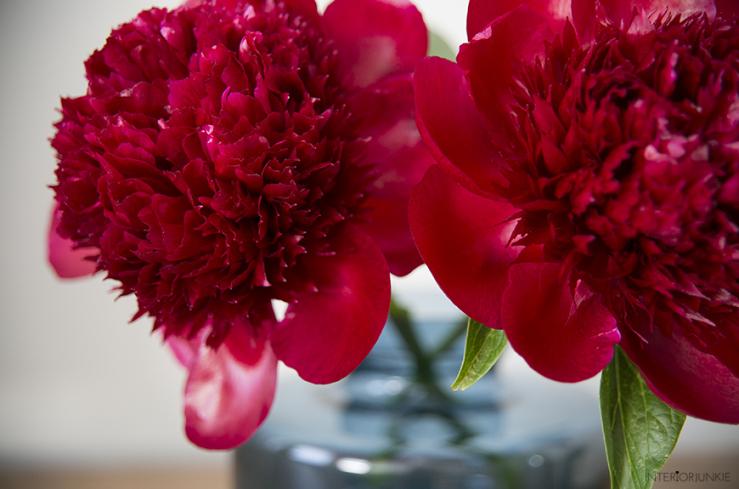 Fleur je zithoek op met de pioenroos