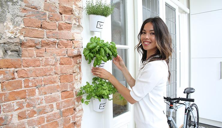 DIY: kruidentuintje aan je muur in 5 minuten
