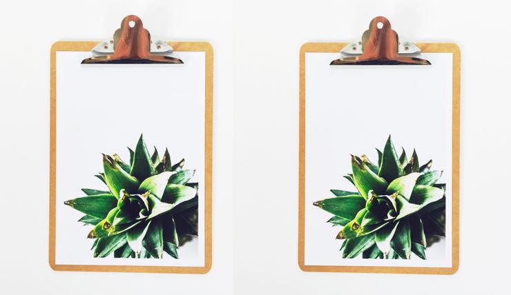 Kan best nog: een abstracte ananas op de muur