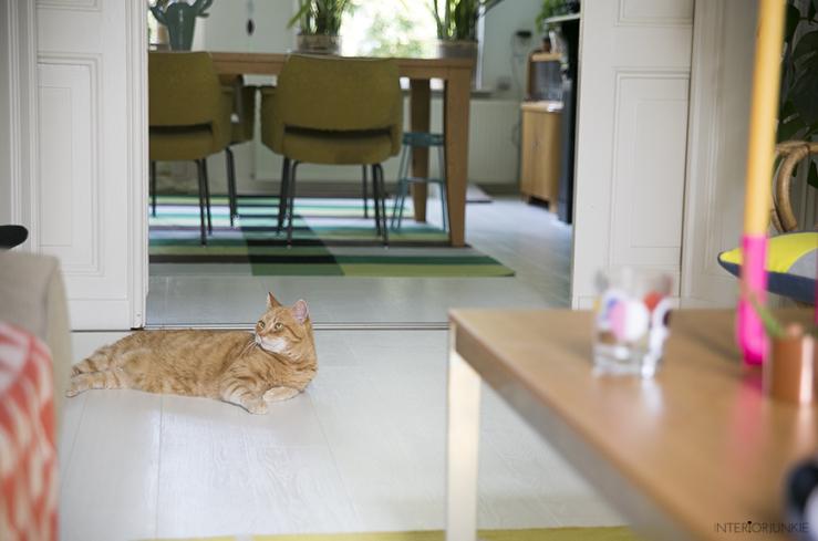 Huizentour in het kleurrijke huis van Evelyn & Otto