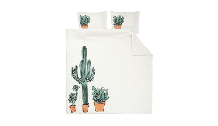 cactus bed thumb