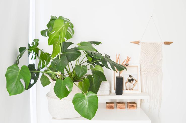 Interieur inspiratie: thuis in het compacte huis van dewi interior